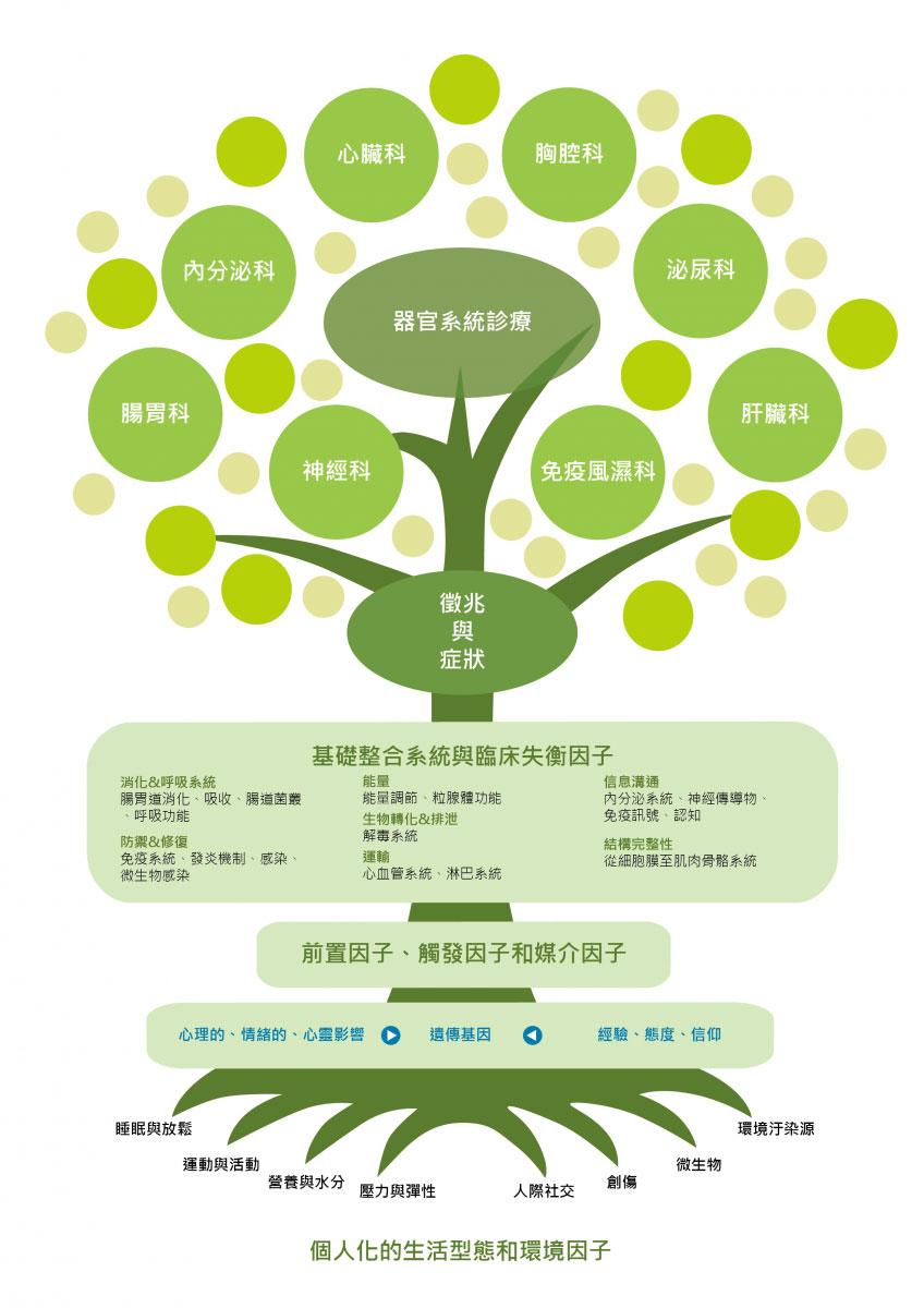 功能醫學之樹(2).jpg